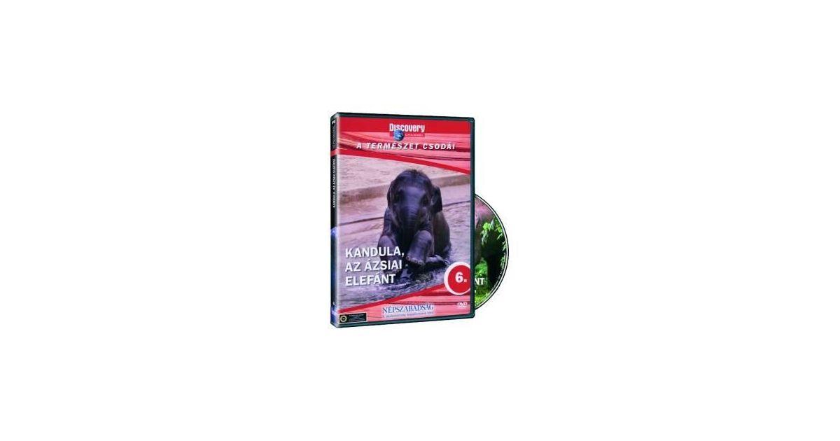 c8e00e2309 Kandula: Az ázsiai elefánt DVD - Dalnok Kiadó Zene- és DVD Áruház -  Ismeretterjesztő filmek