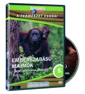 Emberszabású majmok: Erdei rokonaink közelről (DVD)