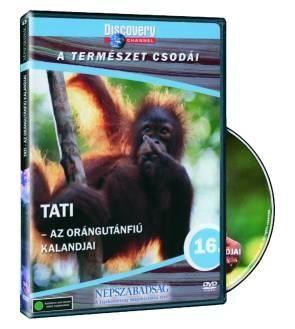 Tati: Az orángutánfiú kalandjai (DVD)