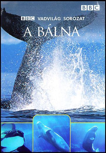 A Bálna - BBC Vadvilág sorozat (DVD)