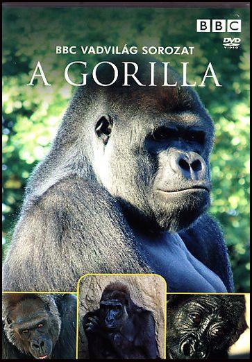 A gorilla - BBC Vadvilág sorozat (DVD)