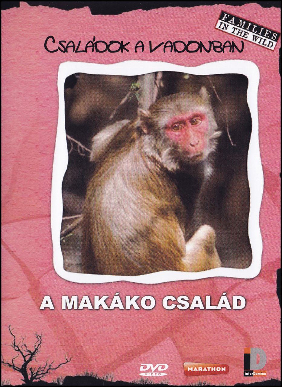 Családok a vadonban - A makákó család (DVD)