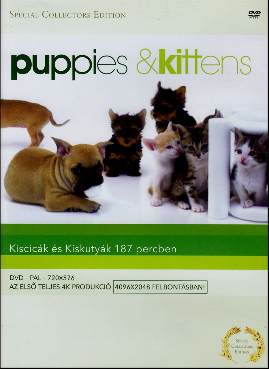 Puppies & Kittens (DVD)
